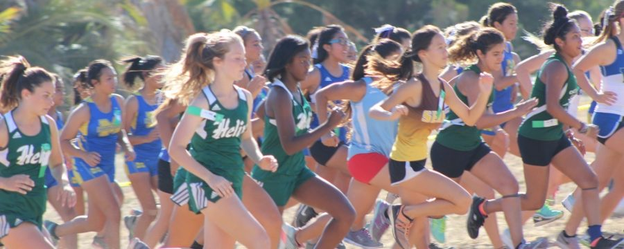 Girls Varsity Cross Country Runs in First Dual Meet Against West Hills High