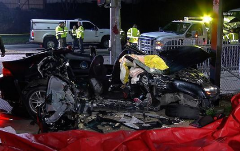A Teen, Two Children, and Two Dogs Die in Fatal Crash