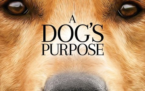 """A Dogs Purpose"" Controversy"