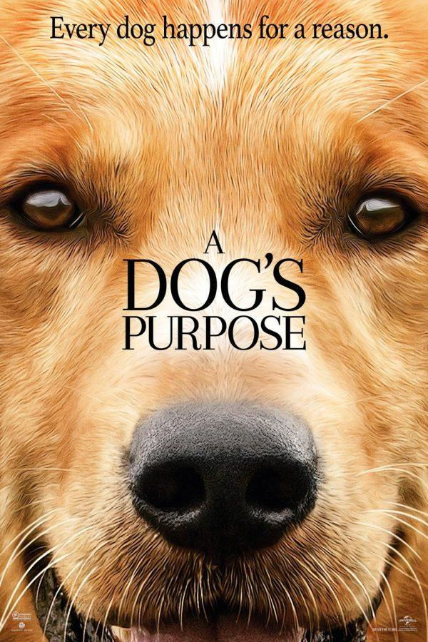 %22A+Dogs+Purpose%22+Controversy