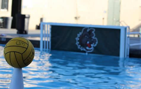 Boys Varsity Water Polo Loses to Helix Alumni