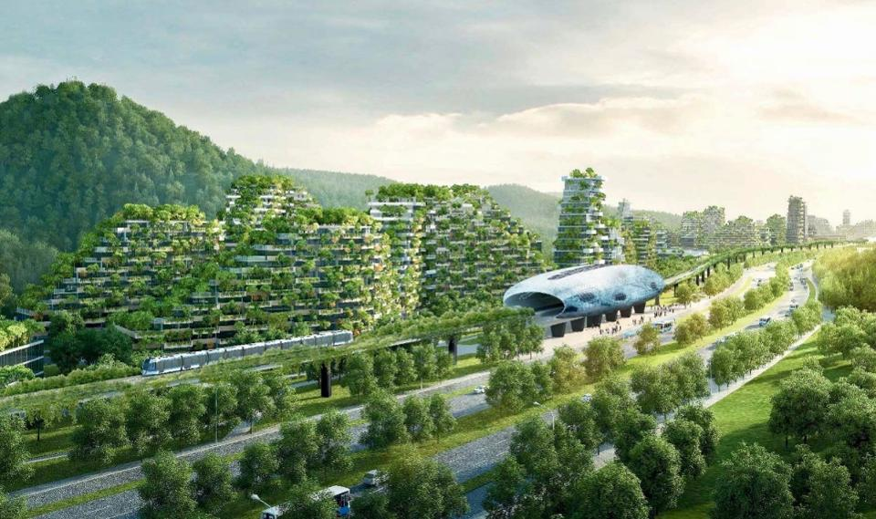 China's New 'Forest City'