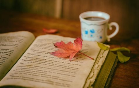 Ten(ish) books you should read this autumn
