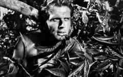 """Son of """"Tarzan"""" actor Ron Ely shot by deputies after killing mother"""