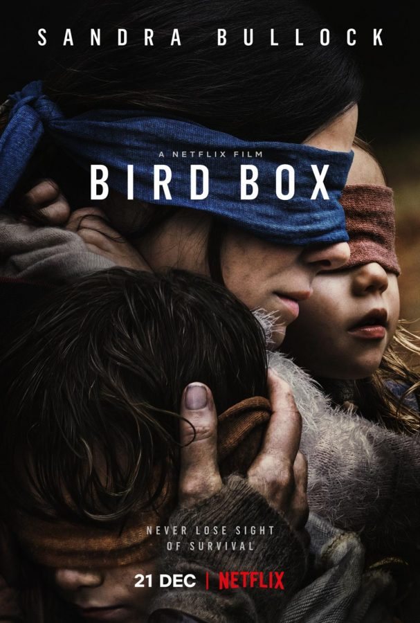 A Rather Interesting Netflix Original: Bird Box